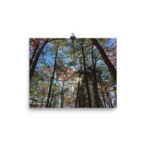 Kaleidoscope — lustre print